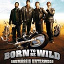 Born to be Wild - Saumässig unterwegs