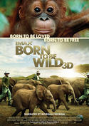 Born to be Wild 3D - Zurück zur Wildnis